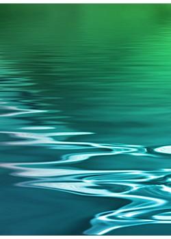 电感耦合等离子体质谱仪(ICP-MS 2000E)测定地表水中金属元素