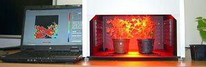 叶绿素荧光技术-FluorCam叶绿素荧光成像系统