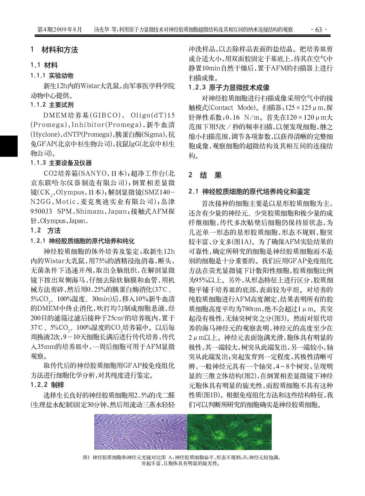利用原子力显微技术对神经胶质细胞超微结构及其相